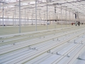 sistemas-cultivo-2