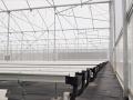 sistemas-cultivo-4