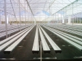 sistemas-cultivo-8