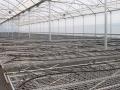 sistemas-cultivo-9