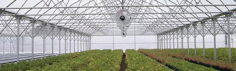 Equipamiento para invernaderos de última tecnología